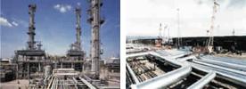 Нефтехимическая и нефтегазовая промышленности